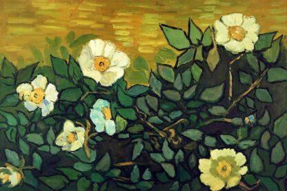 van-gogh-wild-roses